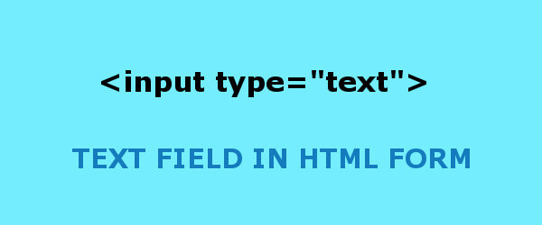 Input Type Text Field in HTML Form