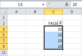 copy paste the same data to other TRUE cells