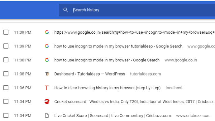 See Google chrome history