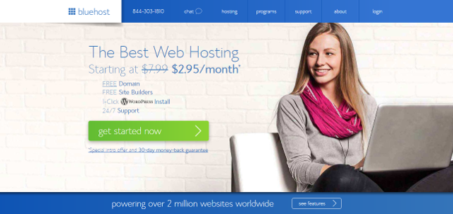 bluehost review best web hosting